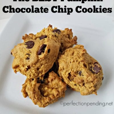 Cake-Like Pumpkin Chocolate Chip Cookies
