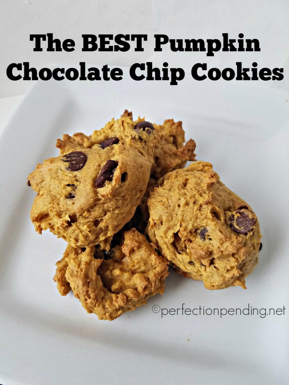 the-best-pumpkin-chocolate-chip-cookies