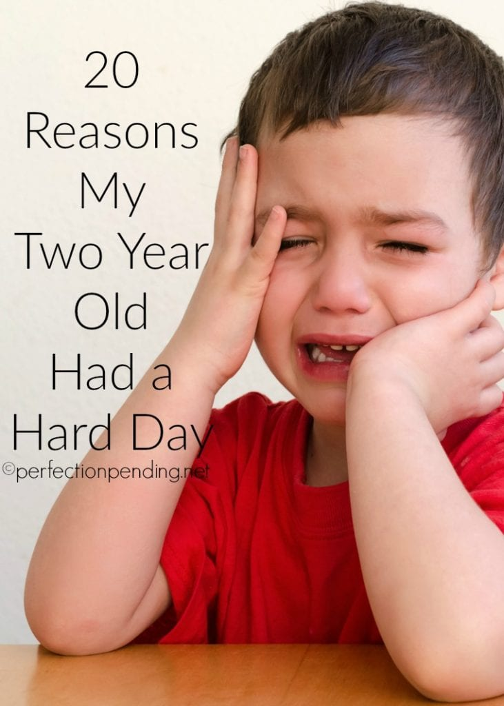 20 Reasons My Two Year Old Had a Hard Day