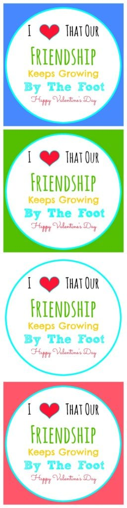 I Love That Our Friendship Keeps Growing By The Foot FREE Printable Valentines to go with Fruit by the Foot! Such a cute idea