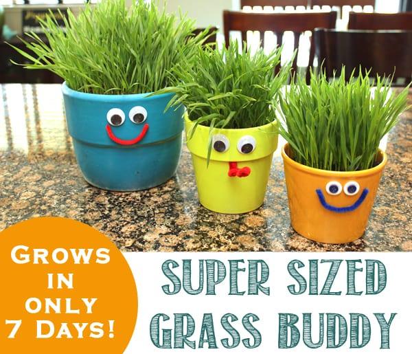 Grass+Buddy+Kids+Homeschool+Activity