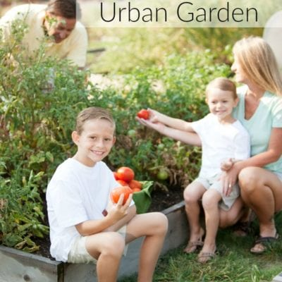 Gardening With Kids: How to Grow an Urban Garden