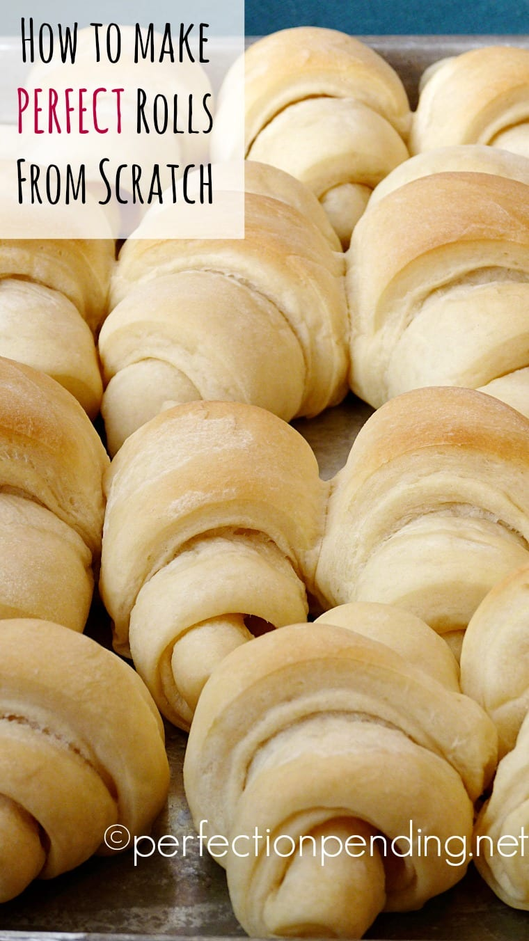 how-to-make-perfect-rolls-from-scratch-this-recipe-will-become-your-go-to-recipe-for-holidays-and-special-events