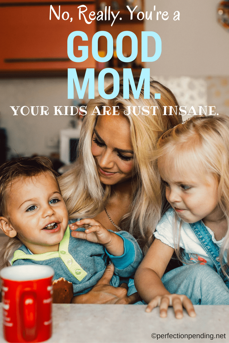 no-really-youre-a-good-mom-your-kids-are-just-insane