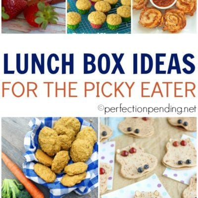 20 Lunchbox Ideas For the Picky Eater