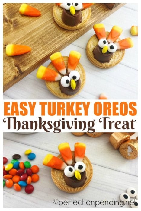 These easy oreo thanksgiving turkey cookies are the best five minute treat you can put together with your kids. Made with golden oreos, rolls, and candy corns, they make a great cookie recipe for Thanksgiving or fall! Perfect for family gatherings, too. #thanksgiving #turkeycookies #cookierecipe #fallcookies #fall #thanksgiving #turkeytreat